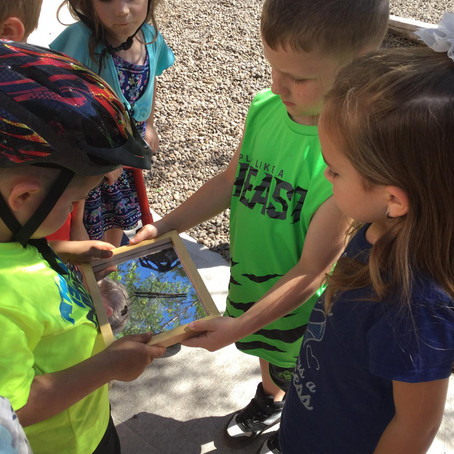 Creating an Outdoor Learning Environment at the MUEE STEAM Center in Gilbert