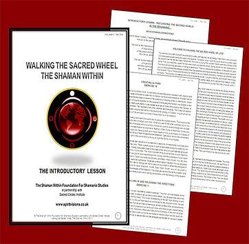 Spiritvisions The Shaman Within Shamanic Homestudies Course