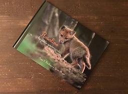 les livres de la foret livres pour enfants nature animaux sylvain mangel photographe marie houlbreque vosges