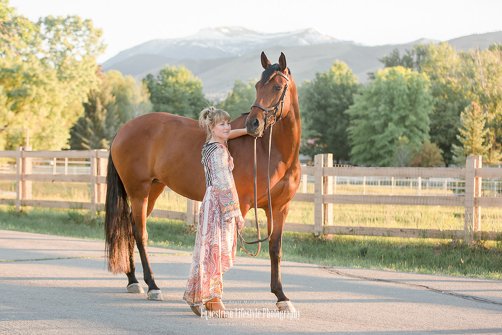 Equine Photography, Horse Portrait, Horse and Rider, Sunset Session