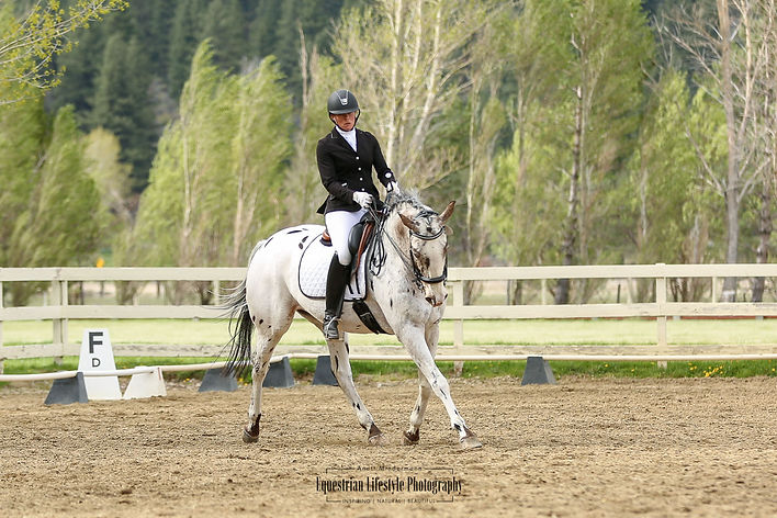 Dressage Rider during the Grand Prix test riding