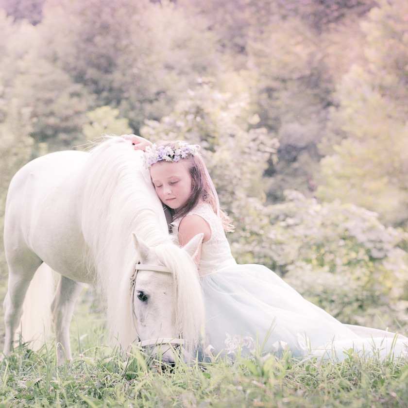 white pony with little girl in a princess dress