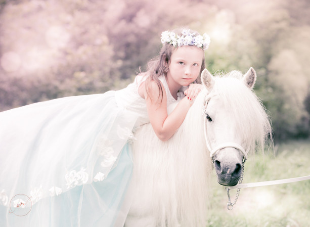little girl in a princess dress sitting on her white pony during portrait session
