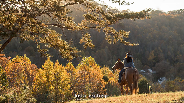 Equine Sunset Photo Session in West Virginia
