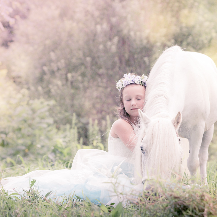 little girl in princess dress snuggles up on her white pony