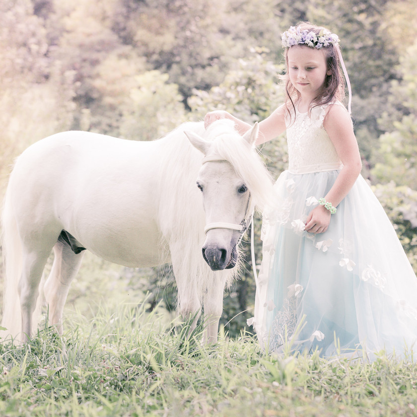 little girl in a princess dress and her white pony during equine photo session