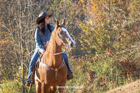 Equine Portrait of a Cowgirl riding