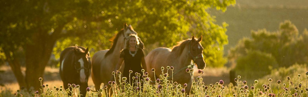 Cowgirl walking with her barrel horses over pasture during a photo shoot