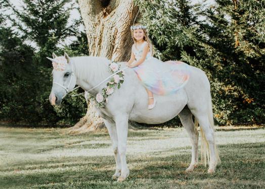 UnicornPhotoShootAnettMindermannPhotography-35.jpg