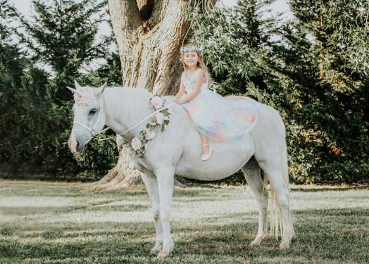 UnicornPhotoShootAnettMindermannPhotography-34.jpg