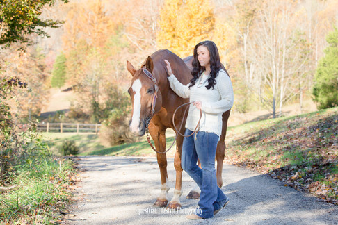 Equine Horse Portrait