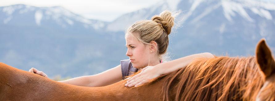 Equine Massage Therapist photograph