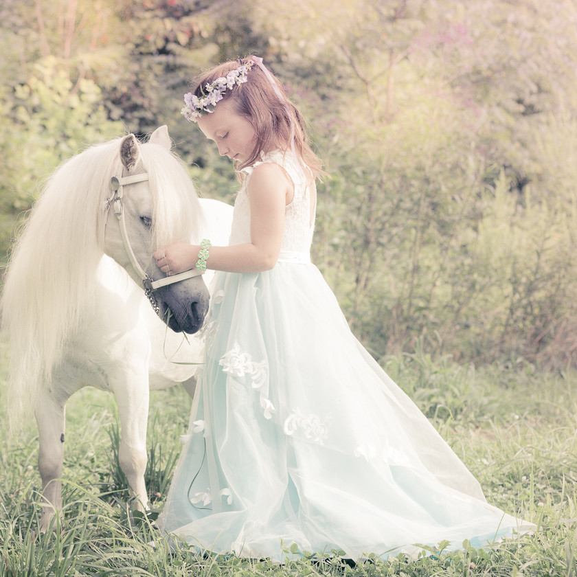 little girl in a princess dress with her white pony