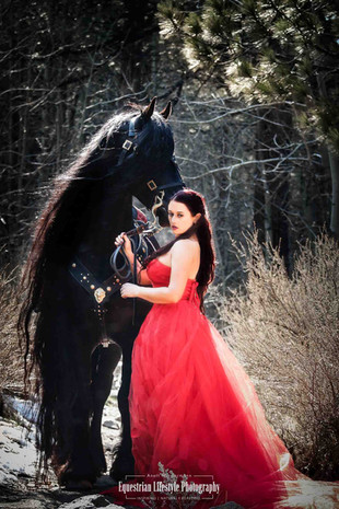 Friesian Stallion with girl in big red dress