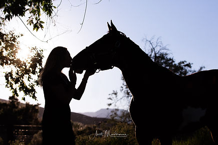 Cowgirl kissing her horse on his nose at sunset, sunset silhouette equine photography
