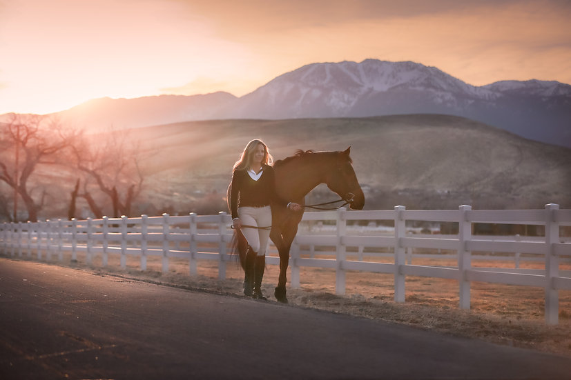 Horse and Rider during sunset, equine photography