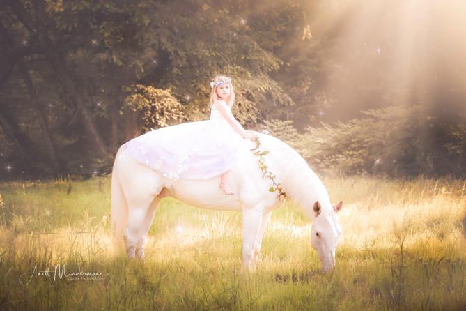 Princess riding a Unicorn in fairytale