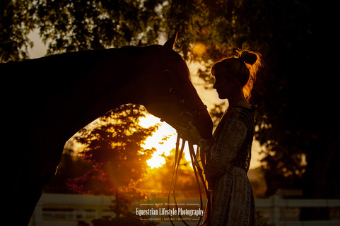 Sunset Silhouette of horse and rider