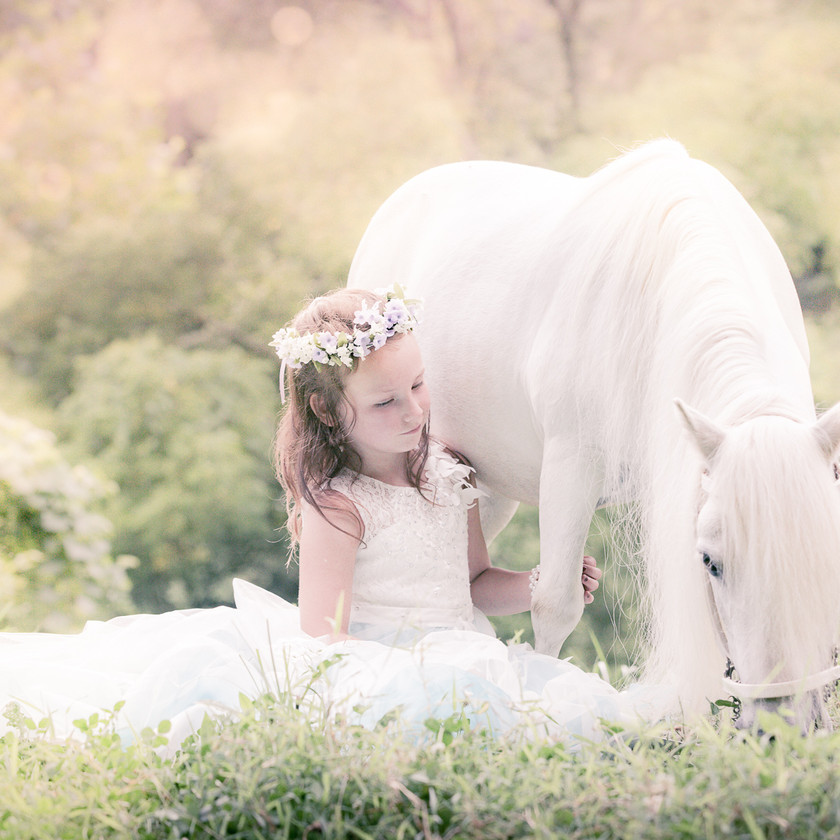 little girl in a princess dress sitting next to her white pony during equine photo session
