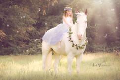 Princess riding a Unicorn