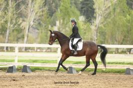 Dressage Rider