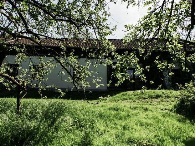 Rehgarten 7