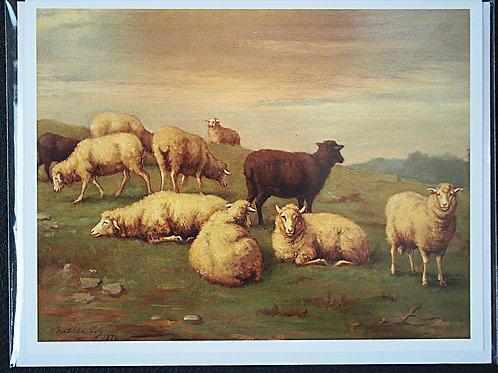 Note Card: Matilda Lotz Original Painting - Black Sheep
