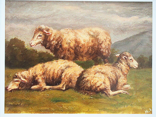 Note Card: Matilda Lotz Original Painting - Sheep at Rest