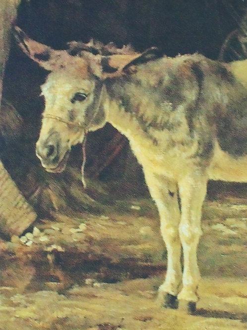 The Donkey Commemorative Notebook