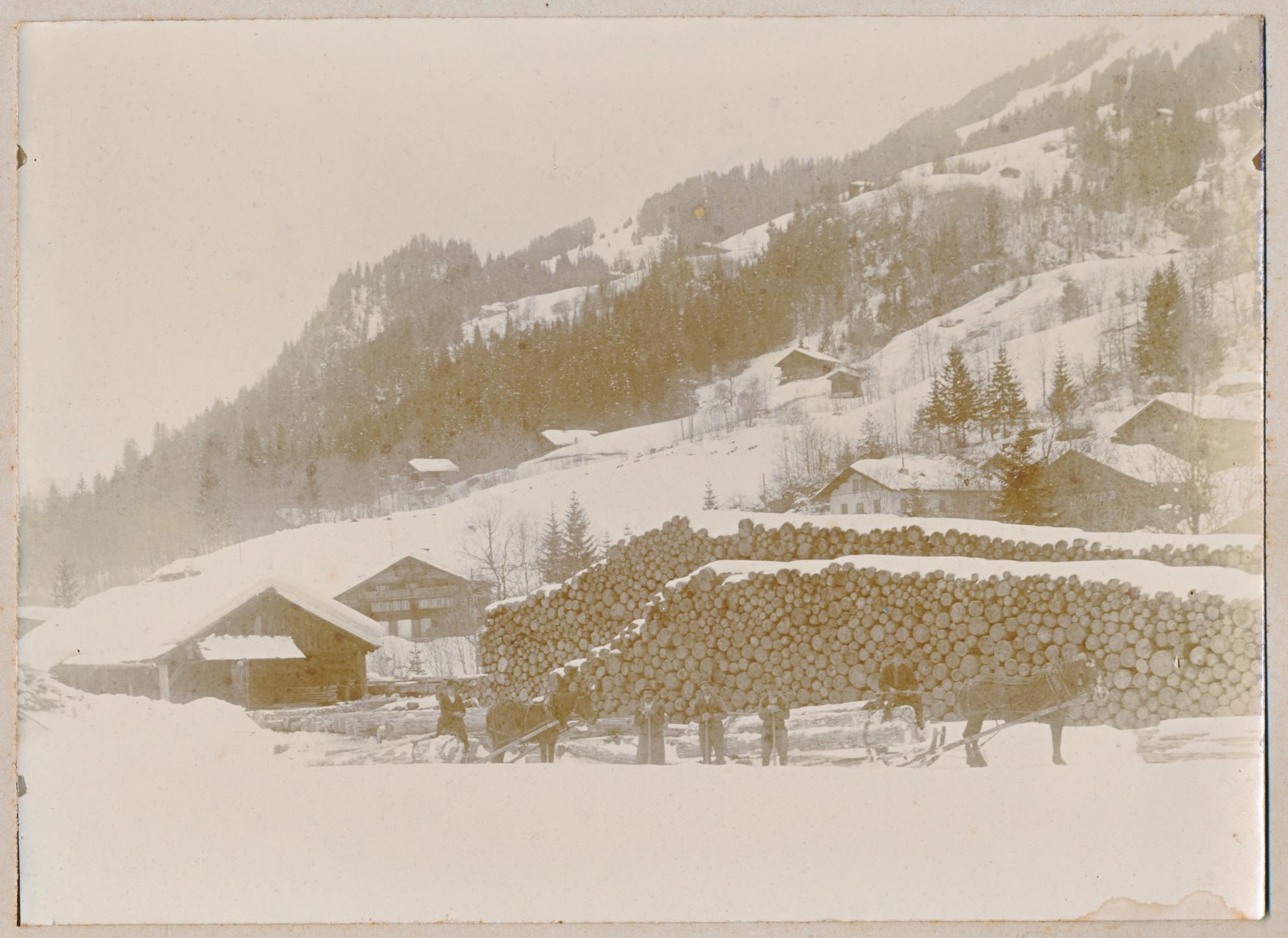 Production de bois avant 1911