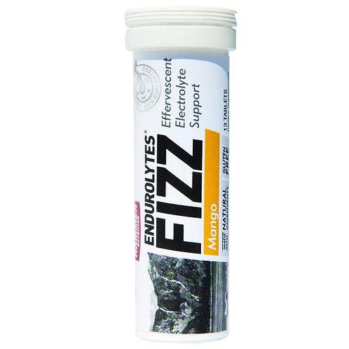 Hammer Fizz Endurolytes