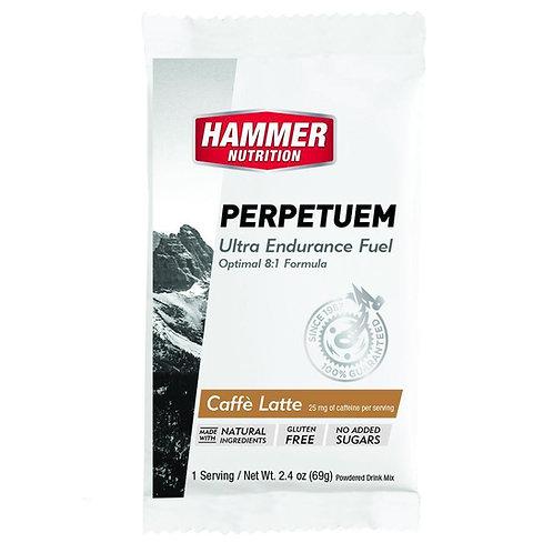 Hammer Perpetuem