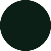 Green Bonded Leather.png