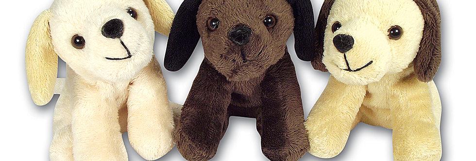 Dog Ted
