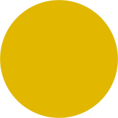 Yellow Bonded Leather.png