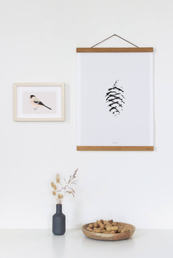 MicushIllustrations