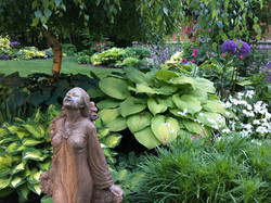 Tammy Borden Garden