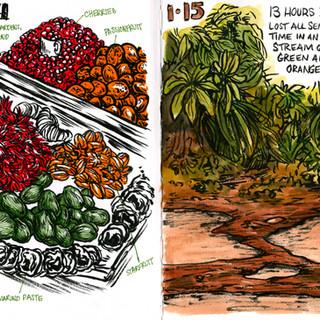 Guyana Field Journal, Jan 14 & 15