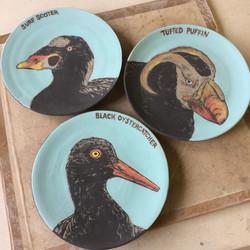 Seabird Plates, 2017