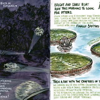 Guyana Field Journal, Jan 29 & 30