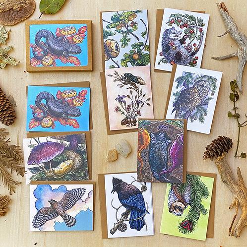 Willamette: Greeting Card Set