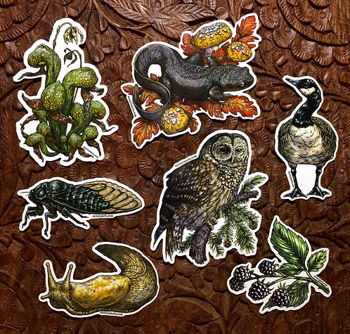 Vinyl Stickers: 7-Pack