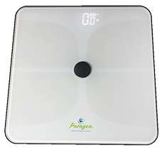 Paragon Home Body Scale