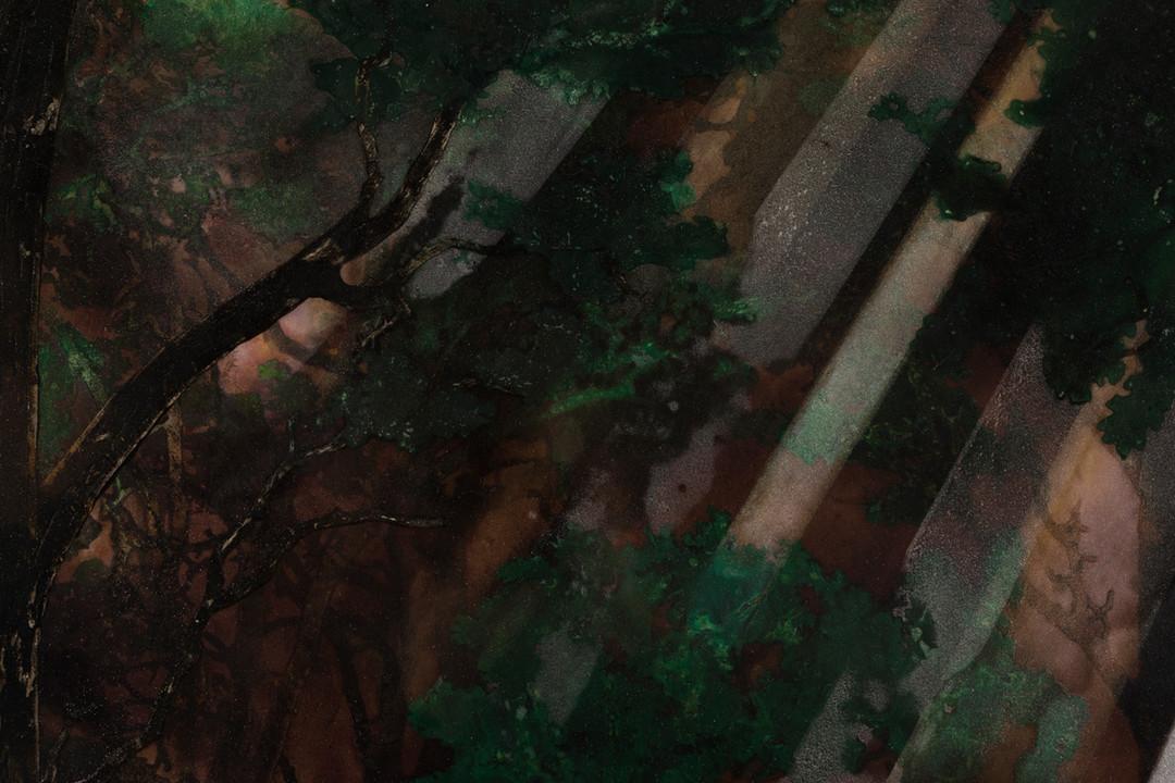 Mirror Test (2017), Detail