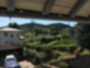 茶畑が見える景色