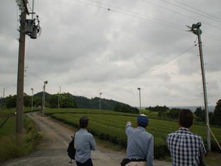 地域の未来の為に、小雨の中で茶畑会議🍵