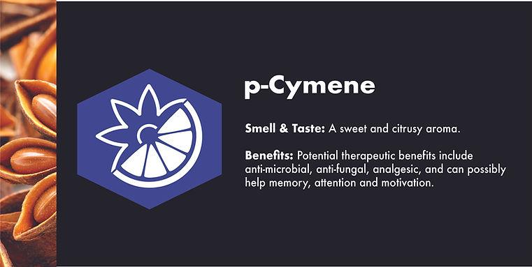 p-cymene.jpg