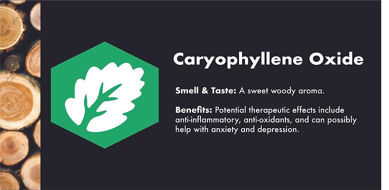 Caryophyllene oxide.jpg