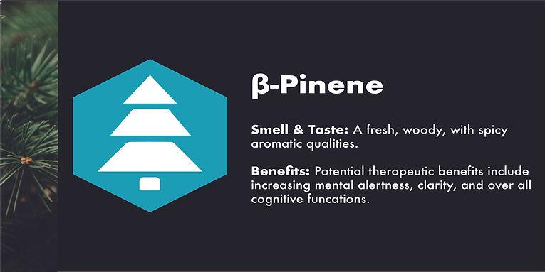 b-pinene.jpg