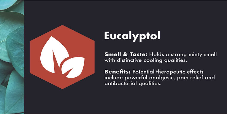 eucalyptol icon des.jpg